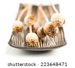Poppy Capsules In A Bowl From...
