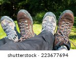 resting legs with two pairs of... | Shutterstock . vector #223677694