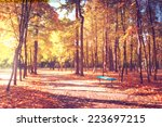 sunny day in outdoor park with...   Shutterstock . vector #223697215
