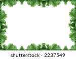 Pine tree frame isolated on a white background - stock photo