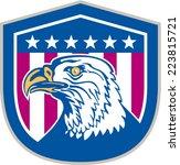 illustration of an american... | Shutterstock .eps vector #223815721