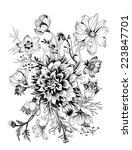 beautiful flower sketch vector... | Shutterstock .eps vector #223847701
