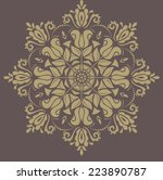 floral vector oriental pattern... | Shutterstock .eps vector #223890787