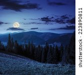 hillside of mountain range with coniferous forest and meadow at night in full moon light - stock photo