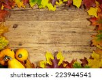thanksgiving autumn fall... | Shutterstock . vector #223944541