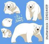Polar Bears Collection.