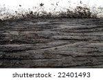 Bicycle Tracks Through Wet Mud...