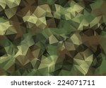 abstract vector military... | Shutterstock .eps vector #224071711