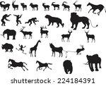 a set of vector animals...