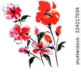 red summer flowers | Shutterstock . vector #224217034