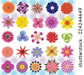 vector of various flowers... | Shutterstock .eps vector #224244649
