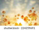background conceptual image... | Shutterstock . vector #224259691