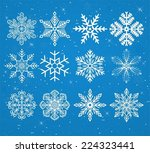 set of snowflakes on a snowy... | Shutterstock .eps vector #224323441
