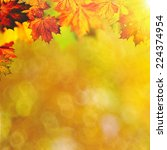 abstract autumnal backgrounds... | Shutterstock . vector #224374954