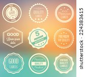 vector labels set on blurred... | Shutterstock .eps vector #224383615