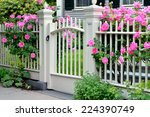 Stock photo wooden gate with pink roses 224390749