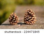 Closeup Photo Of Pine Cone On ...