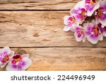 orchids bloom. white with pink... | Shutterstock . vector #224496949