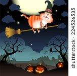 illustration of funny cat flies ...   Shutterstock .eps vector #224526535