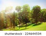 beautiful park outdoors   Shutterstock . vector #224644534