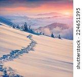 Beautiful Winter Sunrise In Th...