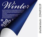winter under curled corner | Shutterstock .eps vector #224693119