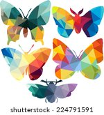 triangle polygonal silhouettes... | Shutterstock .eps vector #224791591