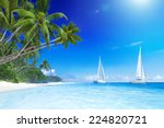 Sailboats On Beach And Palm...