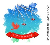 winter landscape with flying... | Shutterstock .eps vector #224847724