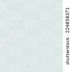 vector seamless pattern. modern ... | Shutterstock .eps vector #224858371