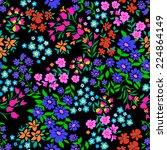 pretty ditsy flower... | Shutterstock .eps vector #224864149