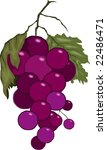 illustration of bunches of... | Shutterstock . vector #22486471