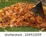 Raking Leaf Pile