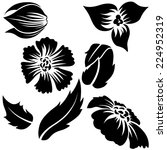 flower elements   black... | Shutterstock .eps vector #224952319