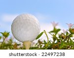 wildflower golf from low angle - stock photo