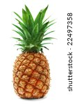 ripe pineapple isolated on white | Shutterstock . vector #22497358