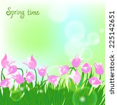 spring card background with... | Shutterstock .eps vector #225142651