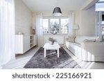 horizontal view of comfortable...   Shutterstock . vector #225166921