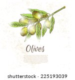 vector sketch of olive tree... | Shutterstock .eps vector #225193039