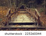 Wooden Stairs With Leaves In...