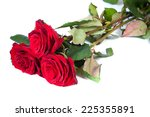 Three Fresh Red Roses Isolated...