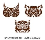 brown and white wise old owl... | Shutterstock . vector #225362629
