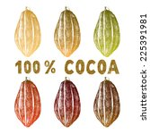 hand drawn cocoa beans set in... | Shutterstock .eps vector #225391981