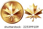 Two Gold Maple Leaf Isolated O...