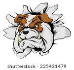 bulldog sports mascot... | Shutterstock .eps vector #225431479