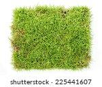 top view of fresh green grass... | Shutterstock . vector #225441607