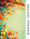 Autumn Leaves Sky Background ...