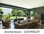 beautiful living room  classic... | Shutterstock . vector #225498229