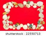 frame arranged from sea shells | Shutterstock . vector #22550713