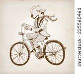 retro hand drawn gentleman with ... | Shutterstock .eps vector #225560461